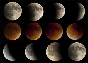 """Total lunar eclipse of September 27, 2015 by Bruce """"Chuck"""" Card"""