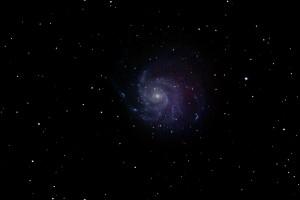 Pinwheel galaxy (M101) by Ken Cleveland