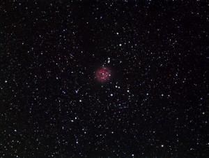 IC5146-Cocoon-Nebula-...LJC-Observatory