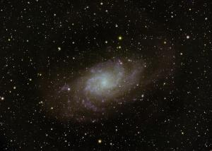 M33 by Steve Gallo