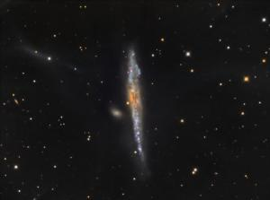 NGC4631 Whale Galaxy by Kevin Boucher